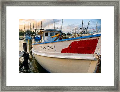 Lady Di Framed Print by Christopher Holmes