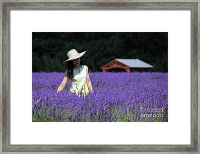 Lady In Lavender Framed Print