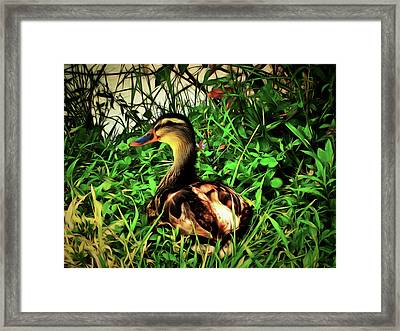 Lady Of Leisure Framed Print by Leslie Montgomery