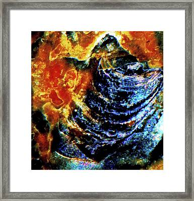 Lady Of The Shell Framed Print