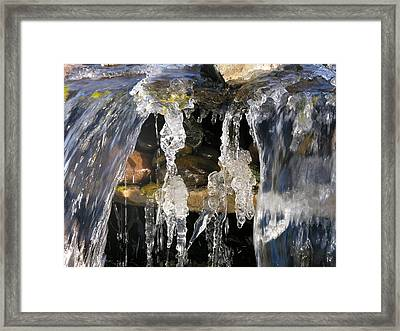 Lady Saves The Dog Framed Print by Mel Crist
