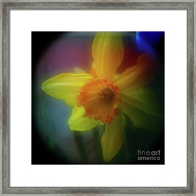 Lady Spring 1 Framed Print by Paul Anderson