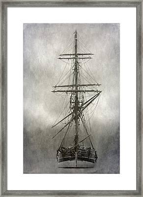 Lady Washington Framed Print by Angie Vogel