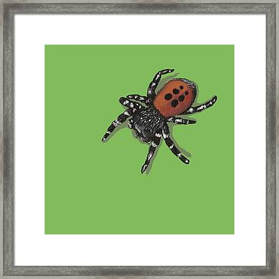 Framed Print featuring the painting Ladybird Spider by Jude Labuszewski