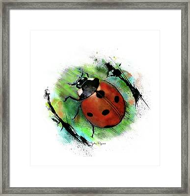 Framed Print featuring the drawing Ladybug Drawing by John Dyess