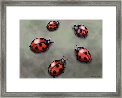 Ladybugs Framed Print by Kevin Middleton