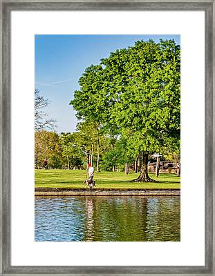 Lafreniere Park 2 Framed Print by Steve Harrington