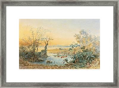 Lago De Valencia. Venezuela Framed Print