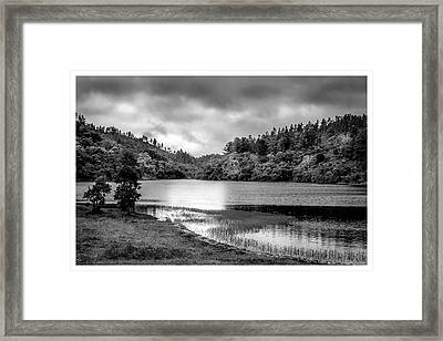 Lagoa Do Itapeva-pindamonhangaba-sp Framed Print