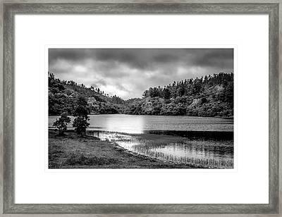 Lagoa Do Itapeva-pindamonhangaba-sp Framed Print
