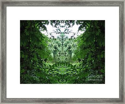 Lagoon Creatures Framed Print