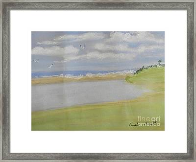Lagoon In Wollongong Framed Print