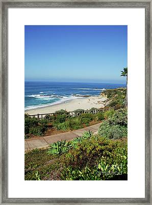 Laguna Afternoon Framed Print by Timothy OLeary