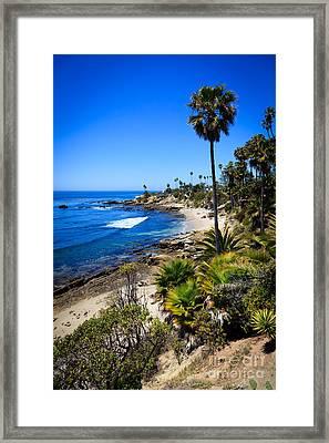 Laguna Beach California Beaches Framed Print by Paul Velgos