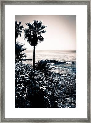 Laguna Beach California Black And White Framed Print