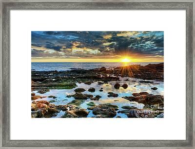 Laguna Beach Tidepools Framed Print by Eddie Yerkish