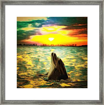Laguna Sunset Framed Print by Anthony Caruso