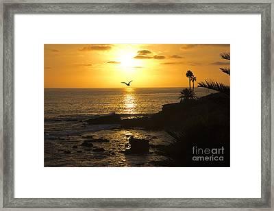 Laguna Sunset Framed Print