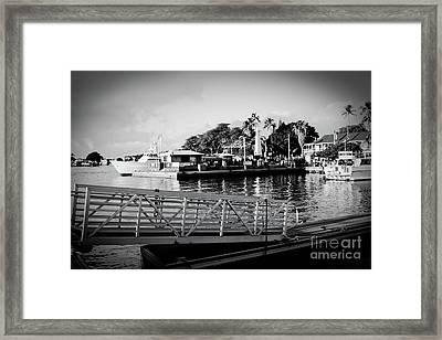 Lahaina Marina In Monochrome Framed Print