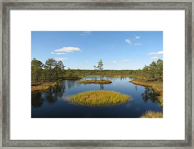 Laheema Nationalpark Estonia  Framed Print