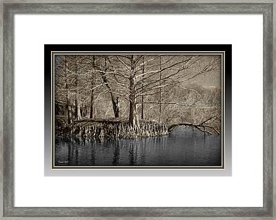 Lake Alice Framed Print