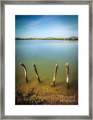 Lake And Poles Framed Print