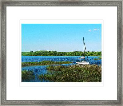 Lake At Hamony Fl Framed Print by Deborah Hildinger