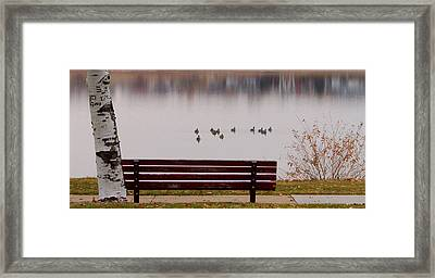 Lake Bench Framed Print by James BO  Insogna