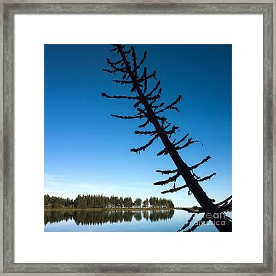 Lake Framed Print by Bernard Jaubert