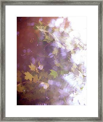 Lake Capture2 Framed Print by Lacey Renae
