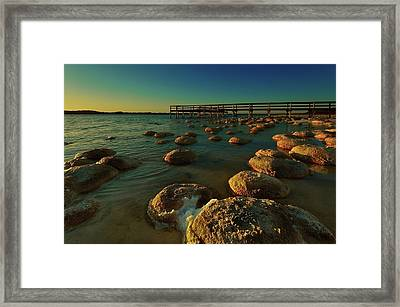 Lake Clifton Thrombolites Framed Print