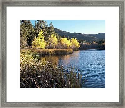 Autumn At Cox Lake Framed Print