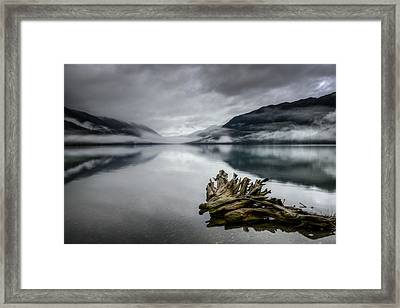 Framed Print featuring the photograph Lake Crescent Relic by Dan Mihai