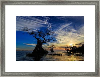 Lake Disston Sunset Framed Print