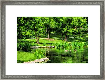 Framed Print featuring the painting Lake Ellyn Geese by Christopher Arndt