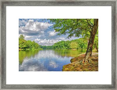 Lake Haigler 2014 01 Framed Print
