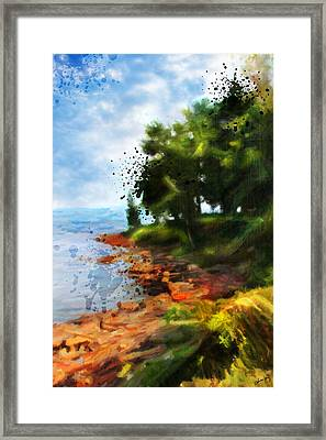 Lake Huron's Shore Framed Print by Chamira Young