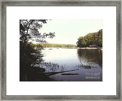 Lake At Burke Va Park Framed Print