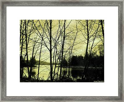 Lake In Winter Framed Print by Jane Tripp