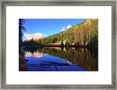 Lake Irene Reflections Framed Print