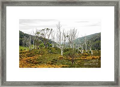 Lake Lilla Track 1 Framed Print by Lexa Harpell