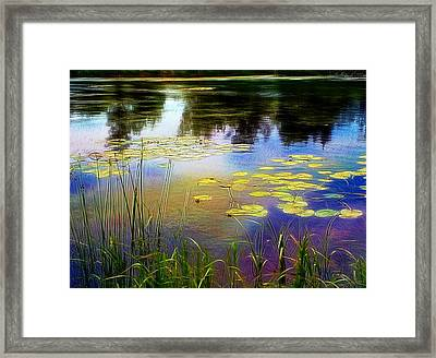 Lake Lilly Monet Style Framed Print by Louise Lavallee
