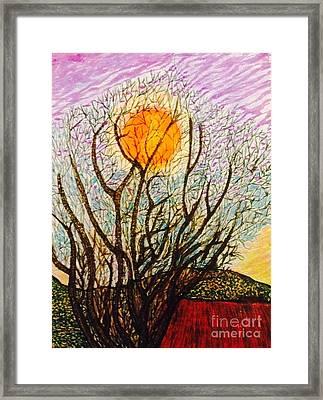 Lake Los Angeles Orange  Framed Print by Ishy Christine Degyansky