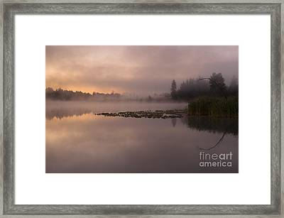 Lake Marsh Framed Print
