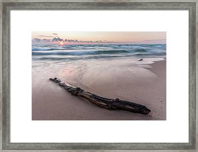 Framed Print featuring the photograph Lake Michigan Driftwood by Adam Romanowicz