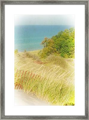 Framed Print featuring the photograph Lake Michigan Dune View by Michelle Calkins
