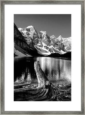 Lake Moraine Drift Wood Framed Print
