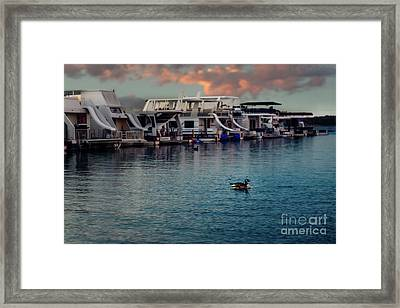 Lake Murray Morning At The Marina Framed Print by Tamyra Ayles