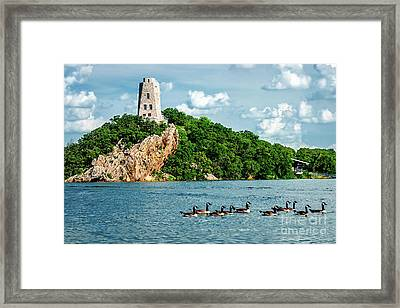 Lake Murray's Gaggle Of Geese Framed Print by Tamyra Ayles