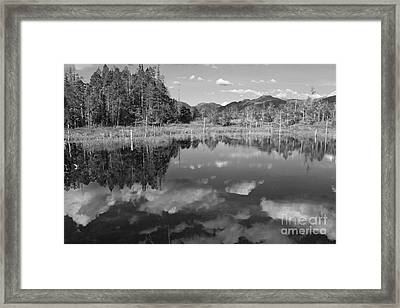 Lake On Gravina Island Framed Print by Carolyn Brown